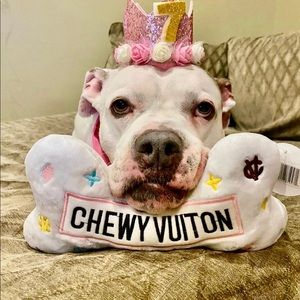 Other - XLarge Chewy Vuiton Dog Toy